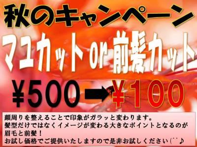 キャンペーン 秋 2019